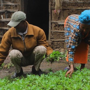 Using community conversations to change perceptions of community members about  gender relations in the Ethiopianhighlands