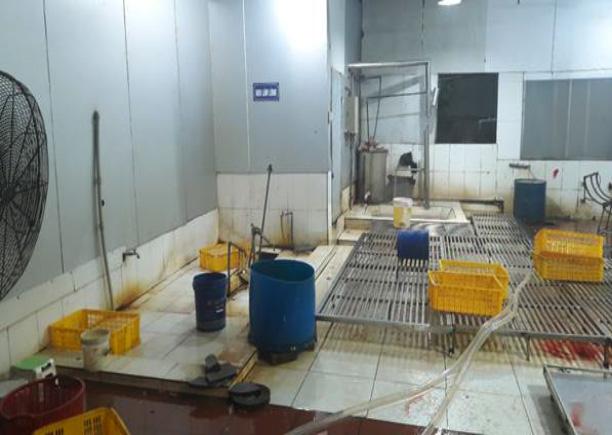 Livestock CRP GASL Vietnam grills
