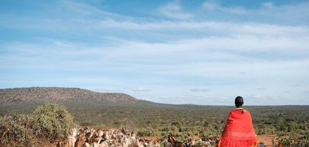 Dryland landscape Oldonyiro Samburu Livestock CRP cropped