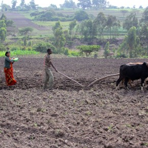 Community conversations increase women's access to farming information in the Ethiopianhighlands