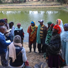 Community conversations change gender perceptions in Amhara farmers'groups